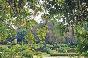 Blick auf den Rosengarten im Humboldthain