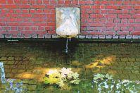 Ein Nilpferd speit Wasser am Vinetaplatz