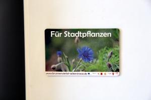 Die Kornblume hat die meisten Stimmen bekommen. Das Motiv ziert deshalb einen neuen Kühlschrankmagneten.