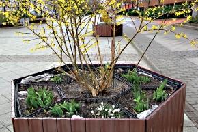 Frühjahrsputz in unserenKöpfen