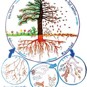 Ein natürlicher Kreislauf