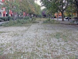 Grünstreifen an der Swinemünder Straße 56:  Die beiden parallel verlaufenden Schienenstränge der Straßenbahn sind hier deutlich zu erkennen. Foto: Alexander Dowe